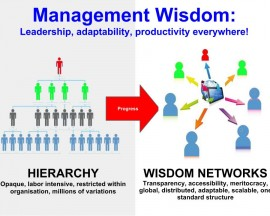 Organisation and Management Wisdom (presentation)