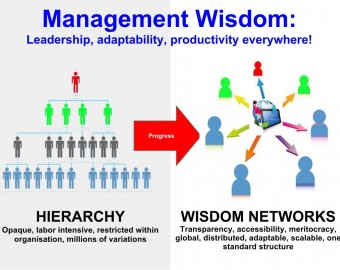 Organisation & Management