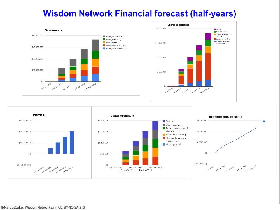 wisdom_network_financial_model_six_month_periods